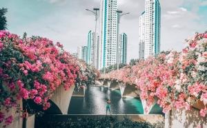 Rực hồng cả bầu trời tại địa điểm check in cực hot cạnh Hà Nội