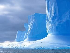 Thiên nhiên Nam cực